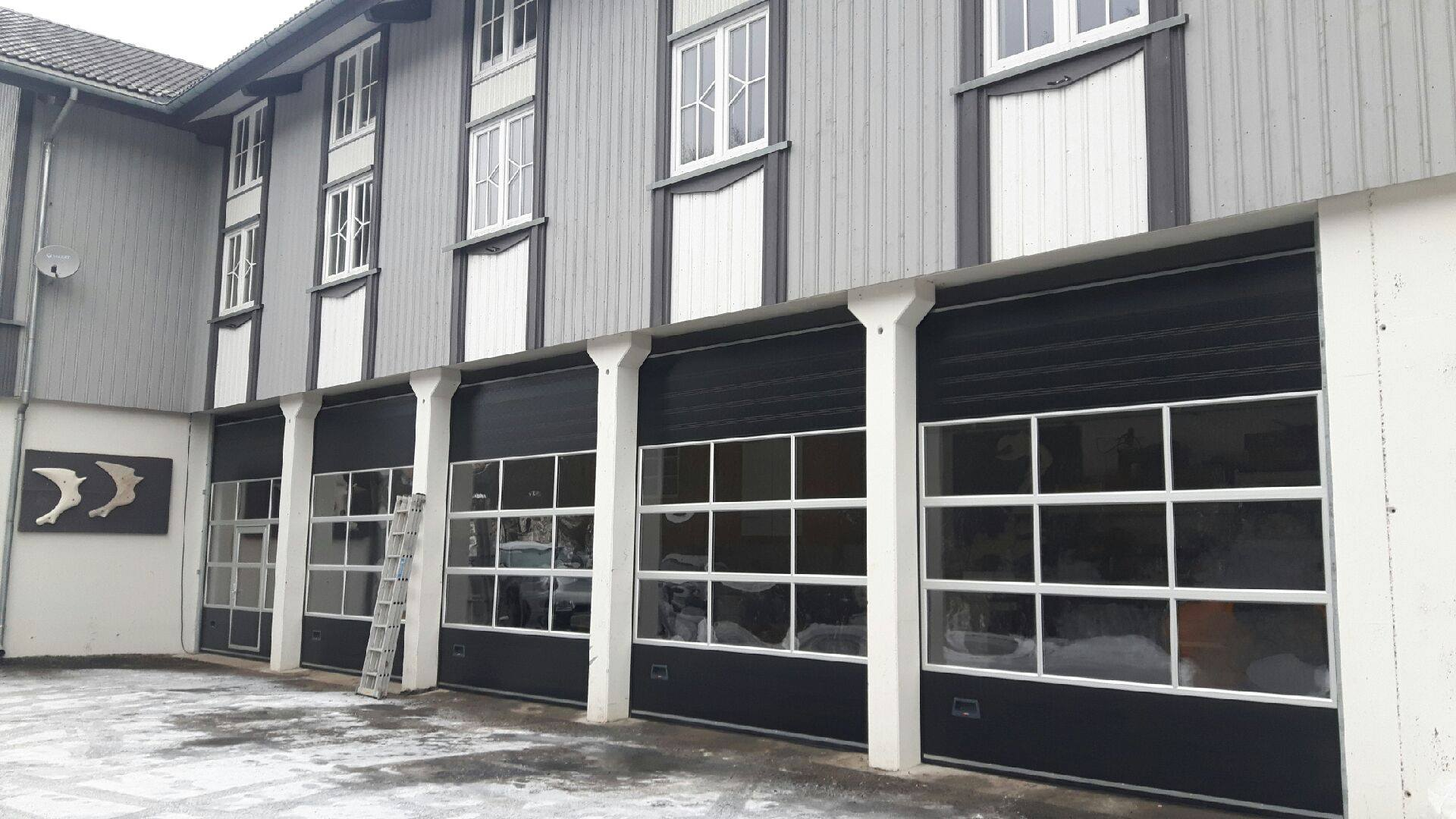 Black 9000M Sectional Industrial Doors With Windows