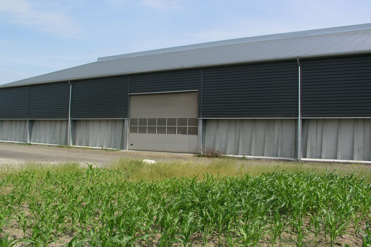 NASSAU 9000M Industrial Sectional Door With Multiple Windows
